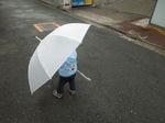 傘が歩いてる!?