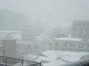 大雪の「成人の日」